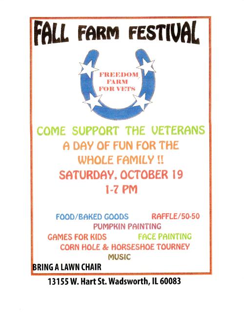 Festival 2013 Flyer
