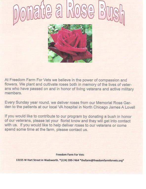 rose bush flyer